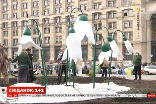 """""""Общество требовало гигантов"""": на Майдане появились бетонные подснежники к 8 марта"""