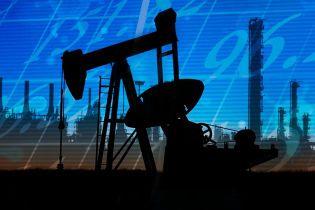Епідемія нафтового безумства