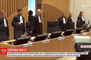 Для решения ряда ходатайств по делу катастрофы рейса MH17 объявили длительный перерыв