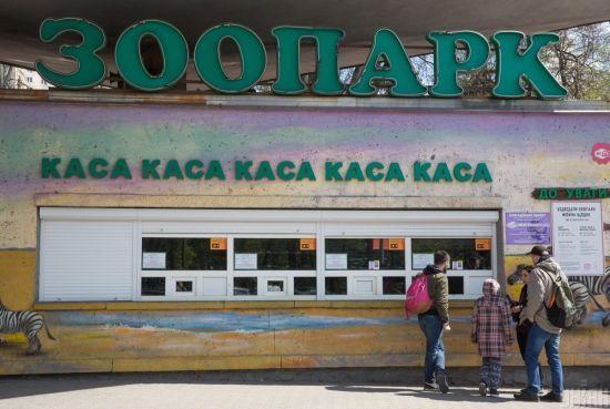 Карантин в Києві. У зоопарку і цирку відреагували на оголошення обмежень через коронавірус