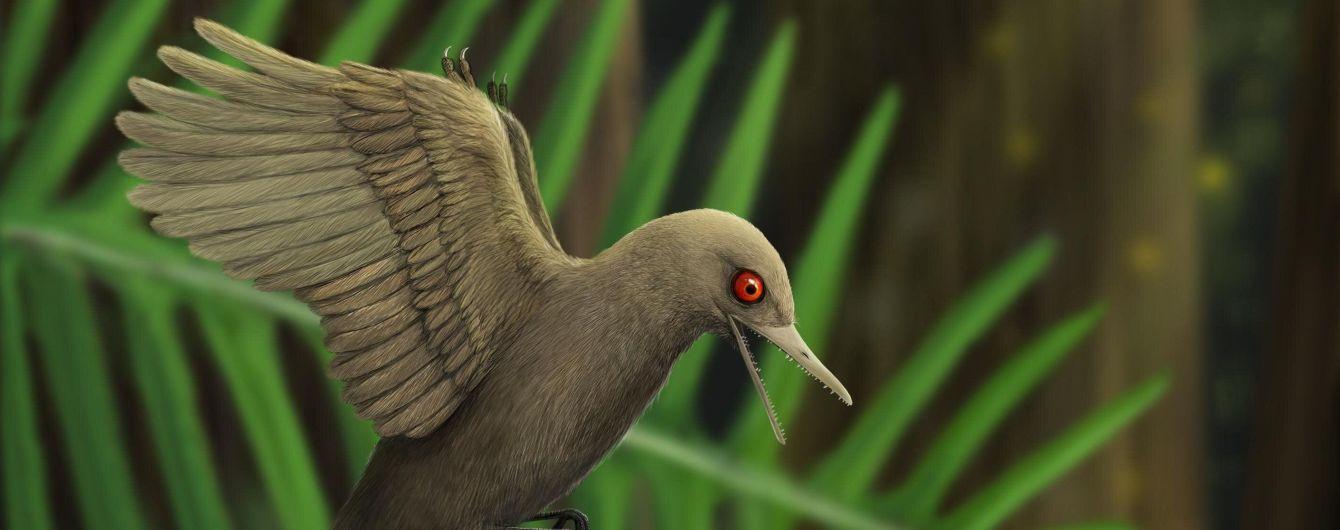 Учені знайшли найменшого в світі динозавра – він був розміром з колібрі