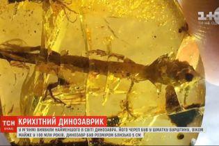У М'янмі вчені виявили рештки найменшого в світі динозавра