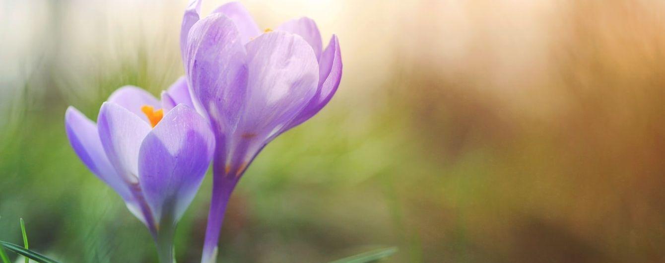 14 березня 2020 року: яке сьогодні свято, прикмети та День ангела