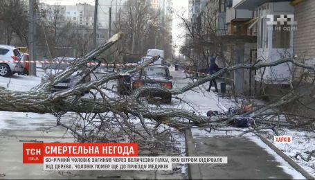 В Харькове 60-летний мужчина погиб из-за ветки, которую ветром оторвало от дерева