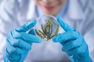 Наука не стоит на месте: 10 хороших новостей, которые отвлекут от коронавируса