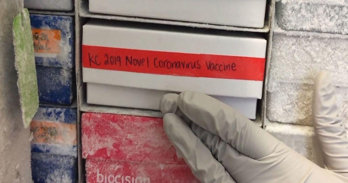 У 30 разів нижча, ніж у вірусу грипу: російський вчений дослідив схильність коронавірусу до мутацій