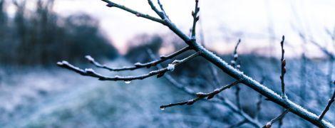 Днем до +12 градусов, местами снег: погода на последний день марта