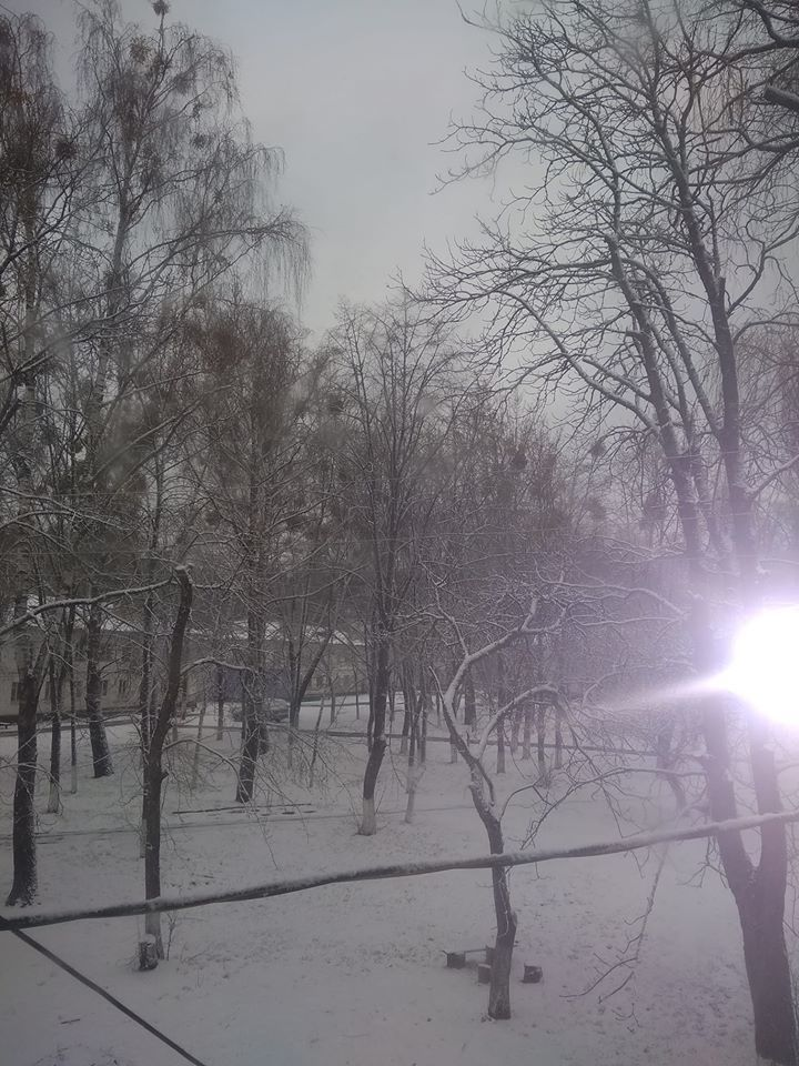 Чернігів завалило рясним снігом