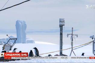 Коронавірус завадив експедиції в Антарктиду: як це вплине на наукові здобутки України
