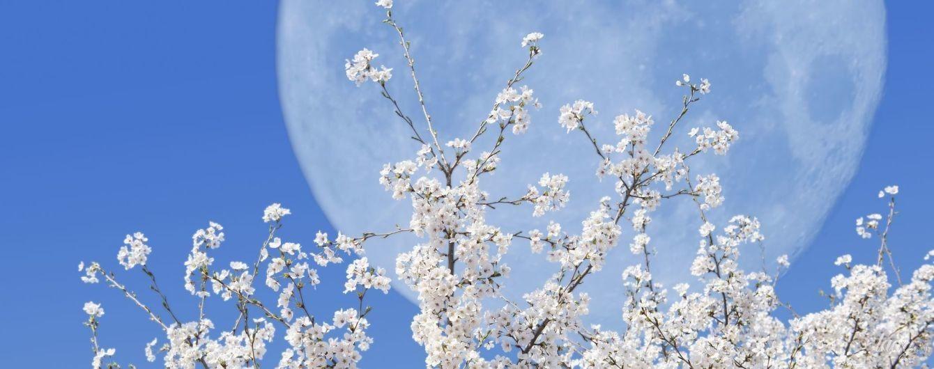 Час боротьби, змін і флірту: місячний календар на квітень-2020