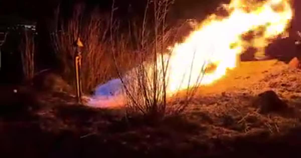Во Львове поджигатели сухой травы повредили газопровод и оставили без