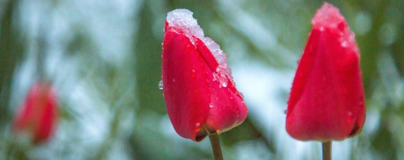 Похолодання і подекуди сніг: погода на вівторок в Україні