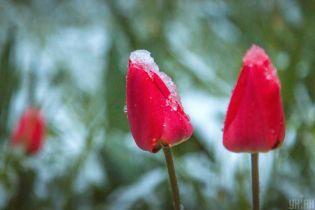 Похолодание и местами снег: погода на вторник в Украине