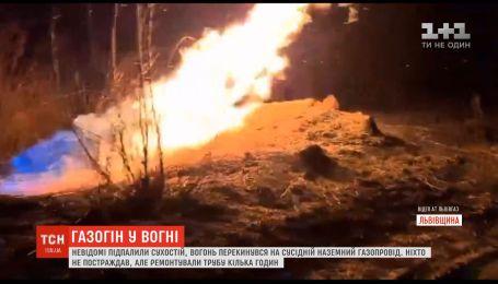 Во Львовской области неизвестные подожгли сухостой, огонь перекинулся на надземный газопровод