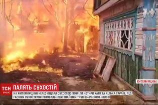 У кількох регіонах України внаслідок підпалу сухої трави загинули люди та погоріли хати