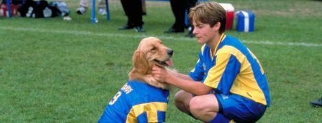 Топ-10 фільмів про футбол, які варто подивитися на карантині