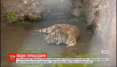 В харьковском зоопарке показали, как их воспитанники соблюдают чистоту