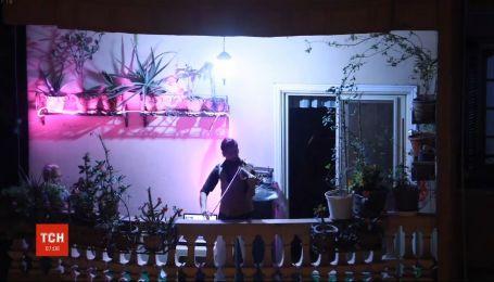 Студент-скрипач из Египта развлекает соседей импровизированным концертом