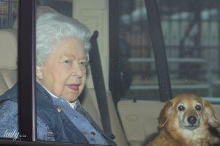 Вместе даже на карантине: как королева Елизавета II и другие звезды проводят время со своими питомцами