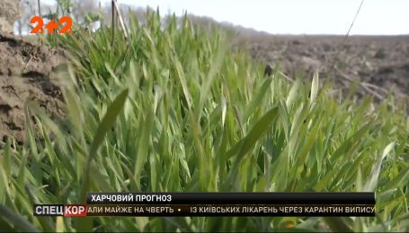 Коронавірус і посівний сезон: що буде з цінами на сільськогосподарську продукцію