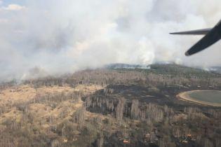 На Поліссі через паліїв сухостіїв пожежі винищили понад сотню гектарів лісів, полів та природного заповідника