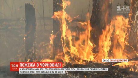 В Чернобыльской зоне вспыхнули 20 гектаров леса