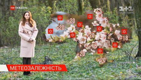 В Україні очікується потепління до +20 градусів - Метеозалежність