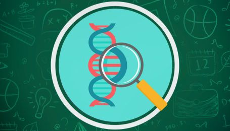 Уроки биологии онлайн для 6 класса: все видео