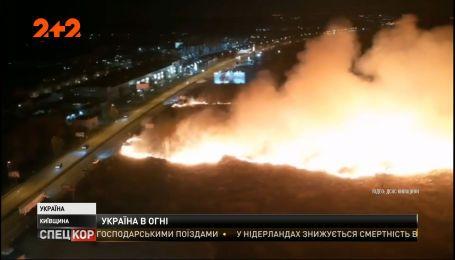 Украина страдает от нашествия лесных пожаров