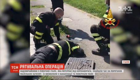 Італійські рятувальники визволили з каналізації маленьких каченят