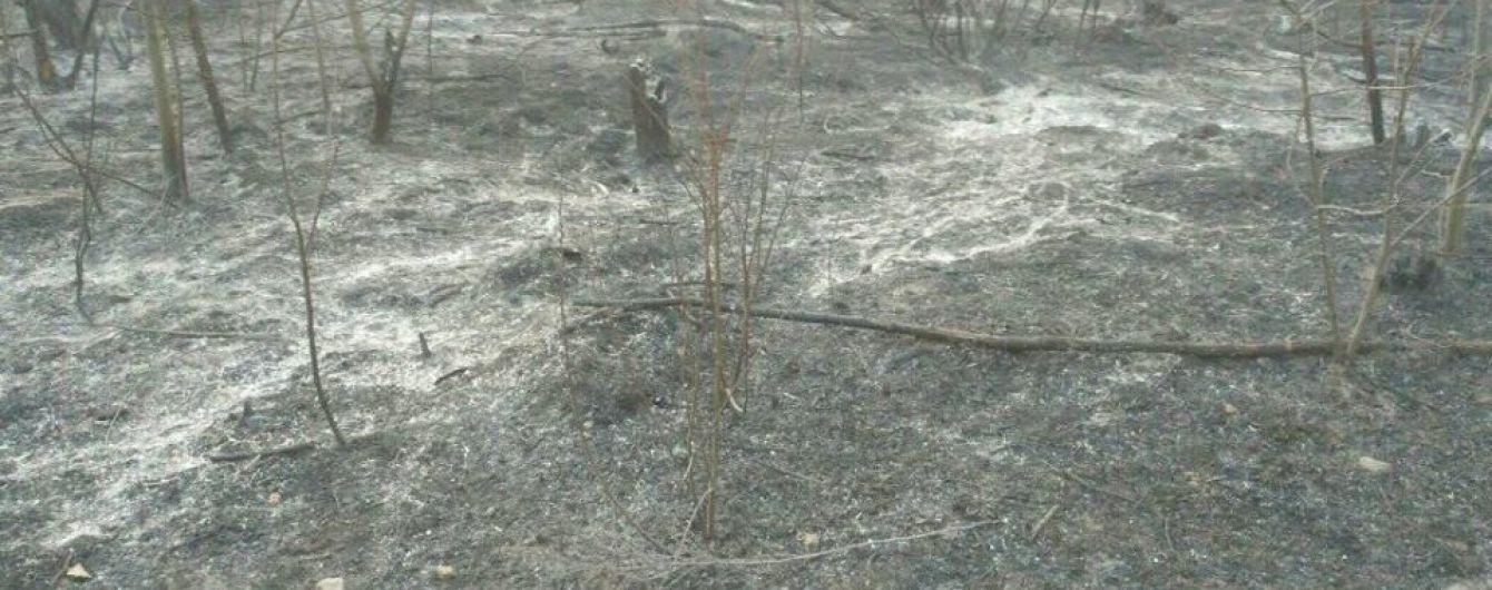 В Чернобыльской зоне уже седьмой день бушуют пожары