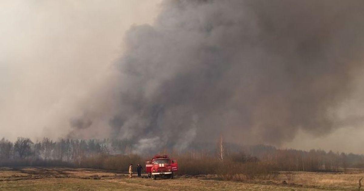 Двох паліїв перевірять на причетність до пожеж у Чорнобильських лісах