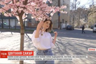 Попри сезон цвітіння, на алеї сакур у Вінниці майже немає відвідувачів