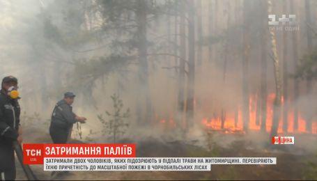 В Житомирской области задержали двух мужчин, подозреваемых в поджоге травы