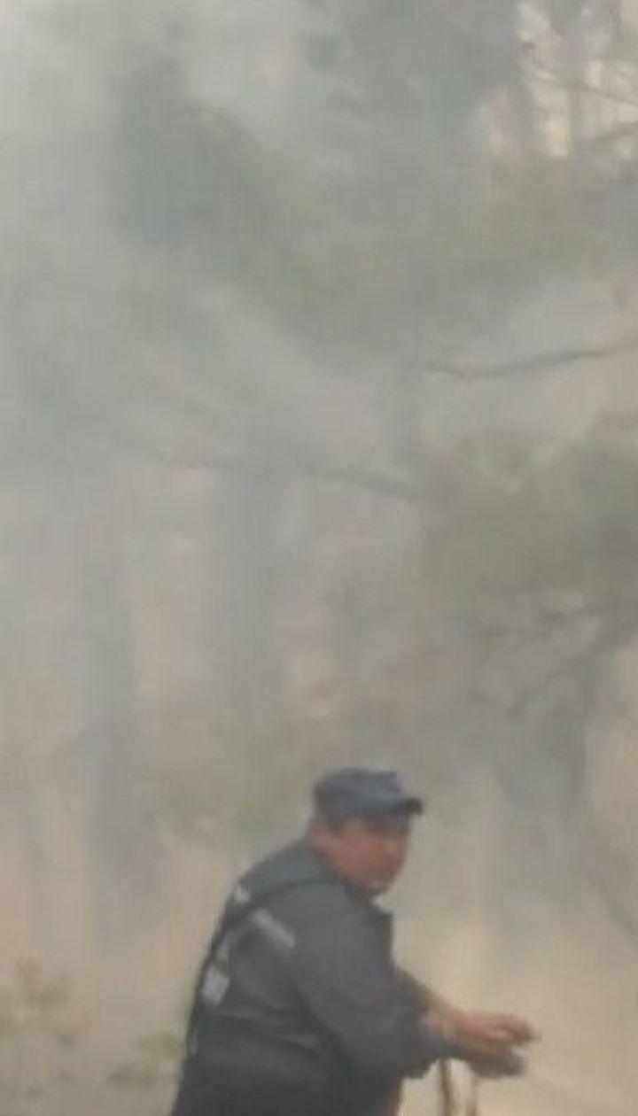 У Житомирській області затримали двох чоловіків, яких підозрюють у підпалі трави