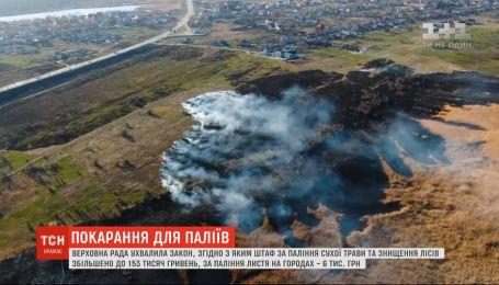Верховная Рада ужесточила наказание для поджигателей сухой травы и за уничтожение лесов