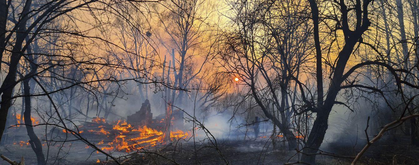 Активисты сняли на видео жуткие кадры разрушительных пожаров в Чернобыле