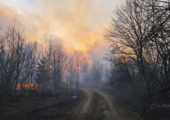 Україна охоплена вогнем: як врятувати країну від паліїв трави та катастрофічних змін клімату – WWF