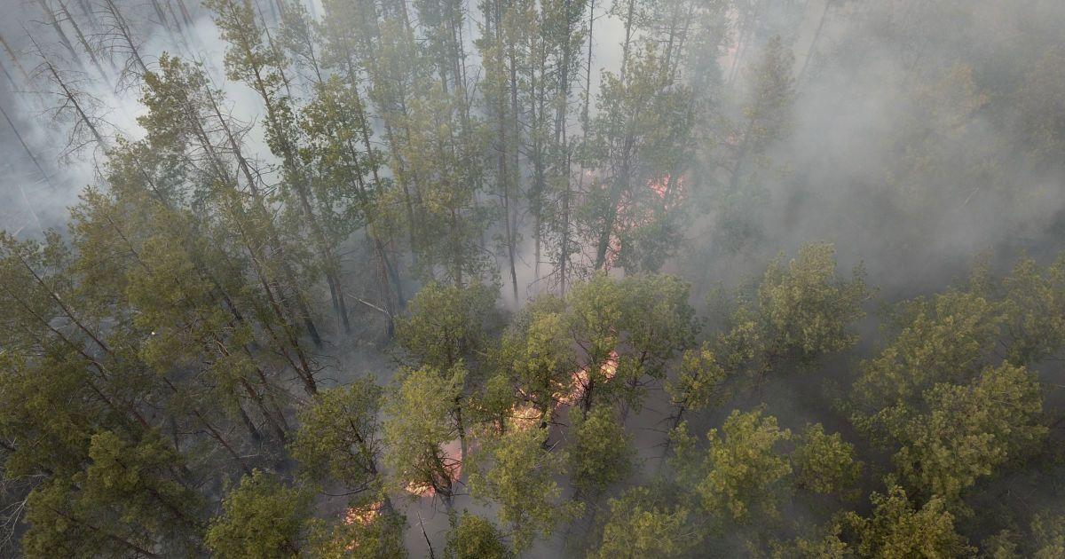 В Беларуси замерили радиационный фон из-за пожаров в Чернобыле и сообщили результаты