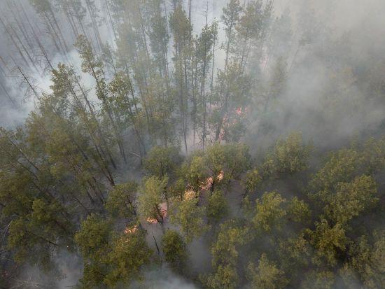 """""""Там нічому горіти"""": Геращенко - про пожежі поблизу сховищ ядерних відходів у Чорнобилі"""