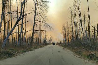 Масштабні пожежі вже знищили понад 11 гектарів заповідника в Чорнобильській зоні
