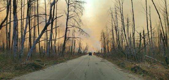 Відкритого вогню немає: Кличко проінспектував Чорнобильську зону