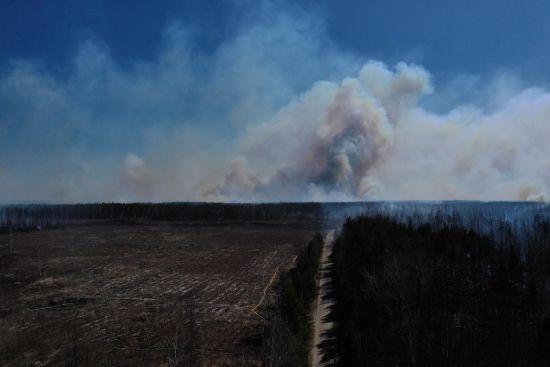 У Держагенстві з управління зоною відчуження розповіли, де досі горить у Чорнобилі