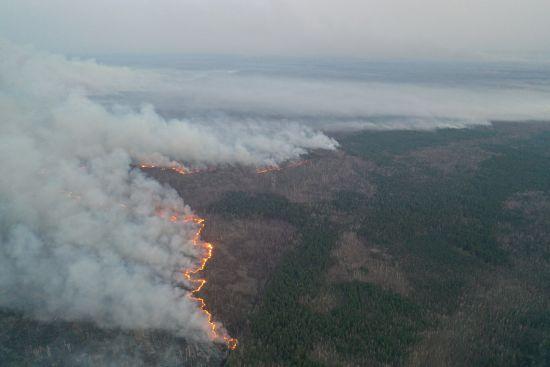 Пожежа у Чорнобилі: останні подробиці про епіцентр загоряння та куди йде вогонь