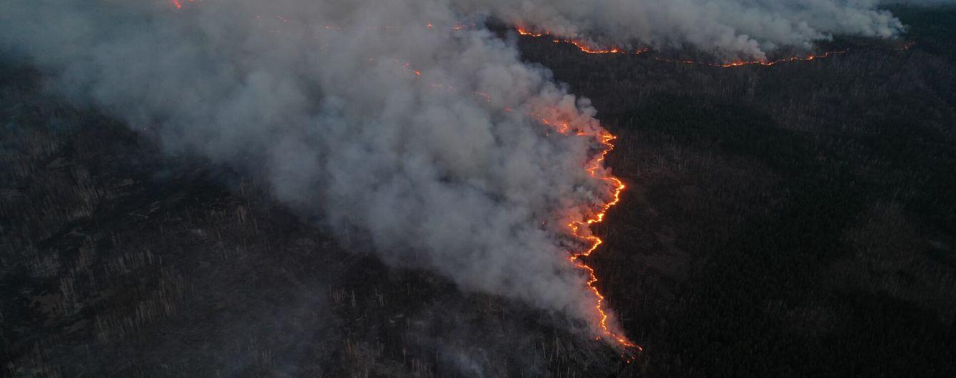 Геращенко рассказал об умышленных поджогах лесов в Киевской и Житомирской областях