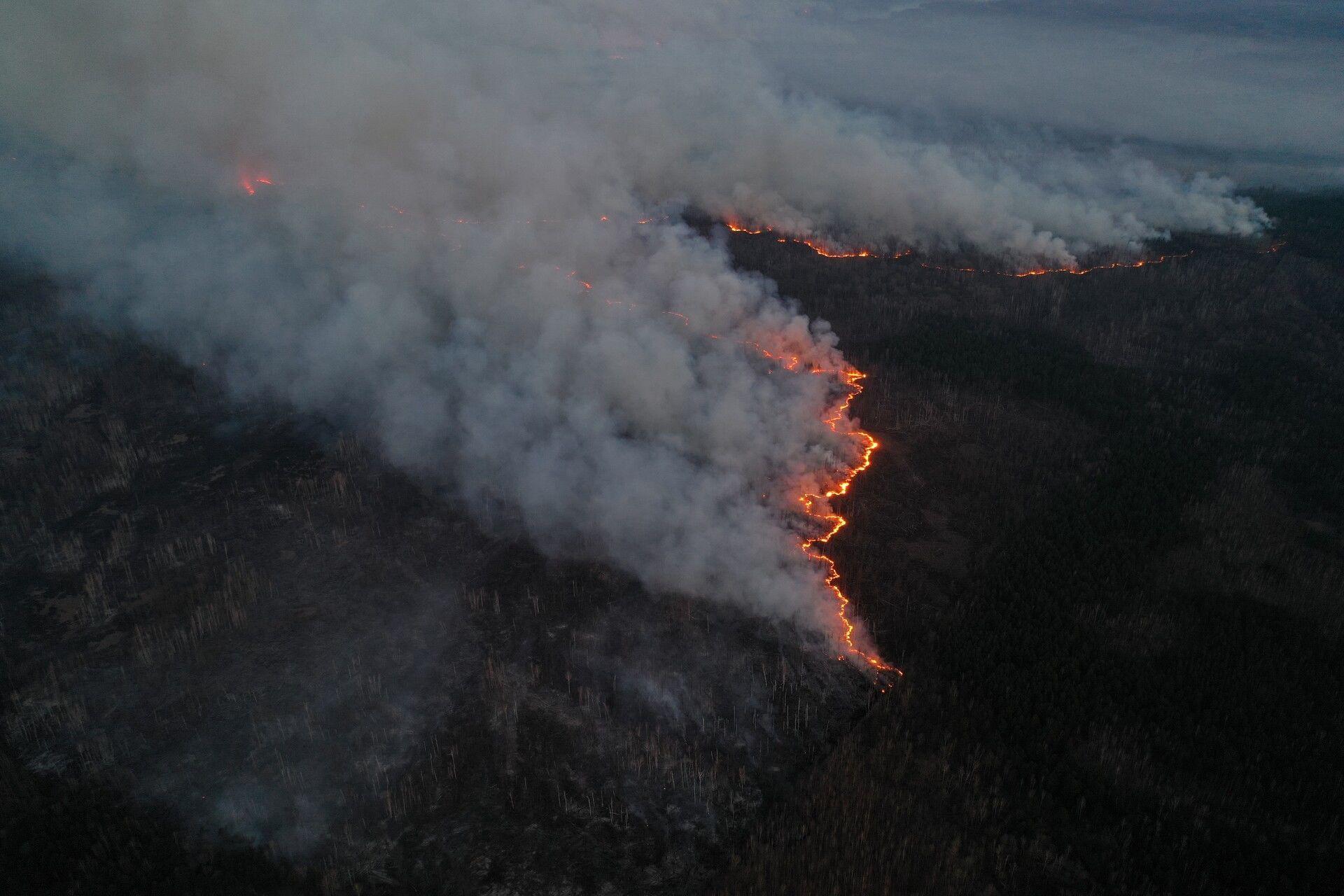пожежа в Чорнобильській зоні_37
