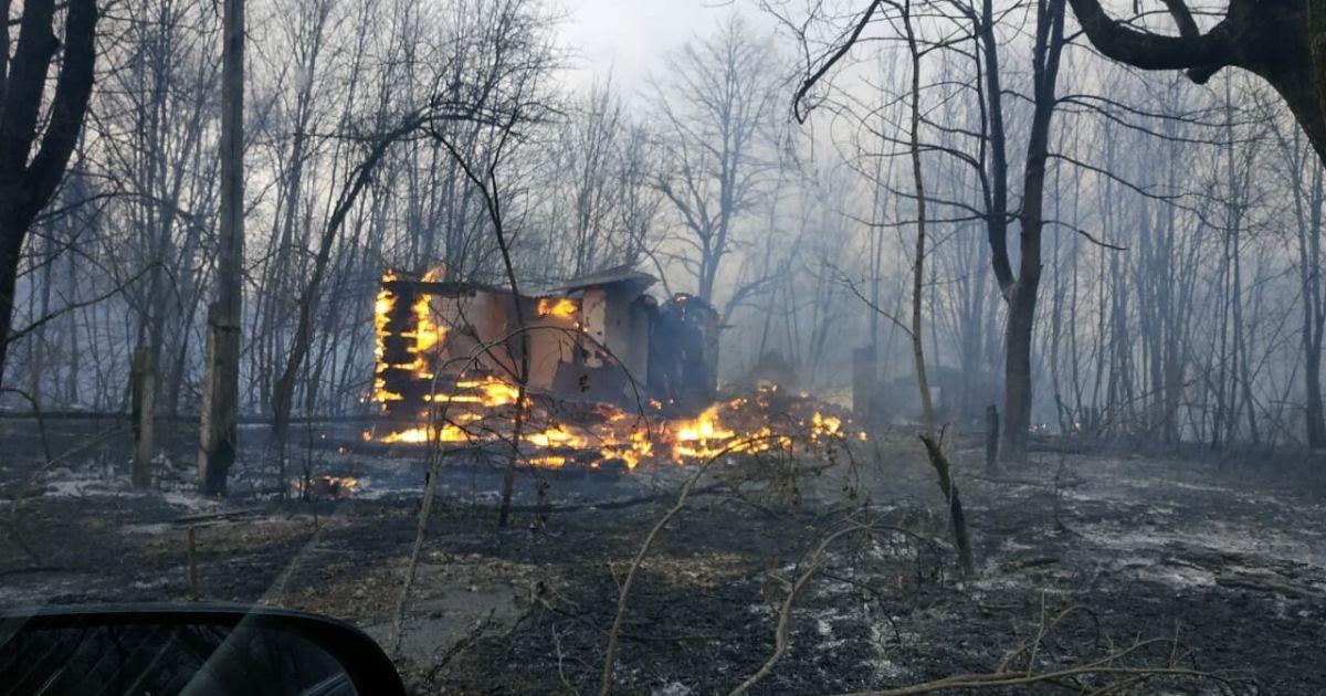 Дождь помог взять под контроль пожар в Чернобыльской зоне: очаги вблизи Припяти потушили