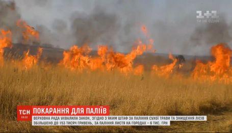 Верховна Рада посилила покарання для паліїв сухої трави та за знищення лісів