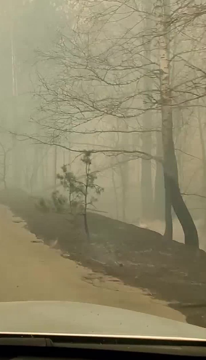 Чернобыльская зона в огне: черным полотном и густым дымом укрыто тысячи гектаров леса