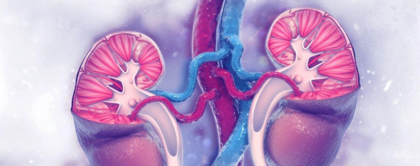 Цистит та сечокам'яна хвороба: прості правила профілактики